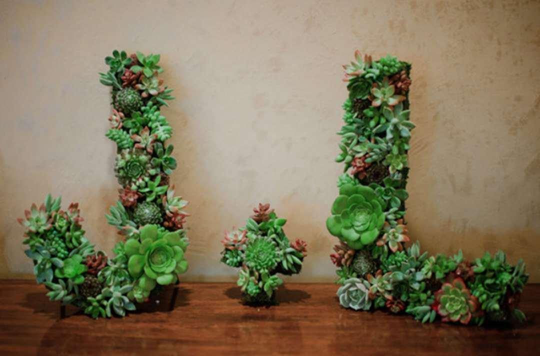 Inspiration Board: Green Ispirazioni  piante succulente Matrimoni a tema DIY Decorazioni consigli
